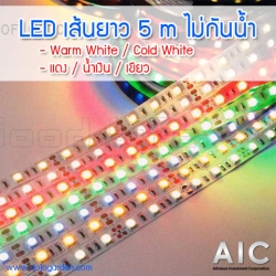 LED 5050 Warm White
