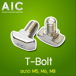 T-Bolt 30 mm - M6x25 - Pack 10