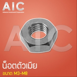 Nuts (น็อตตัวเมีย) M6 (Pack 100)